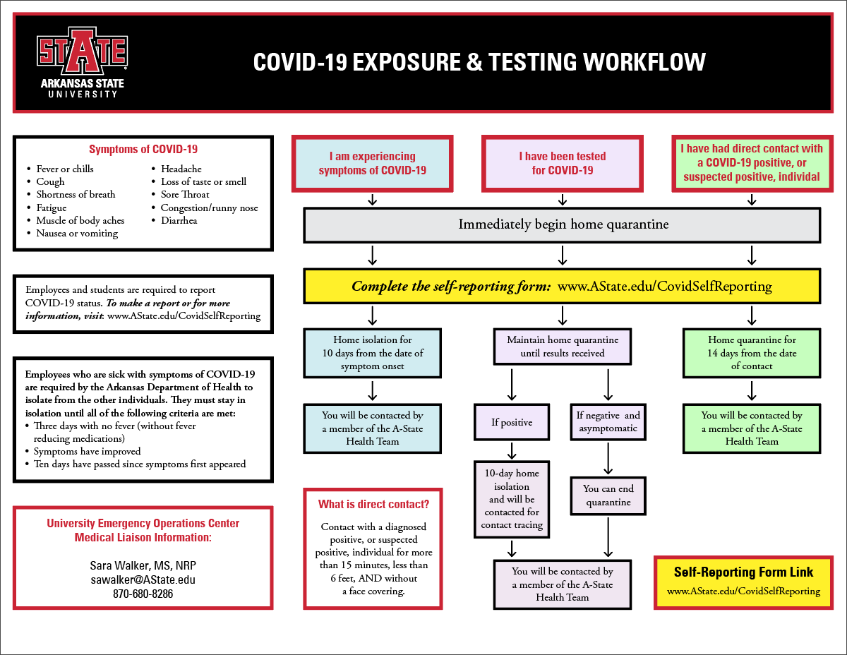 workflow chart that shows the decision options should one experience COVID-19 symptoms, get tested for COVID-19, or have direct contact with someone who is a COVID-19 postive, or suspected positive. Also shown is the contact information for Sara Walker, University Emergency Operations Center Medical Liason. Her email address is sawalker@astate.edu and phone is 870-680-8286.
