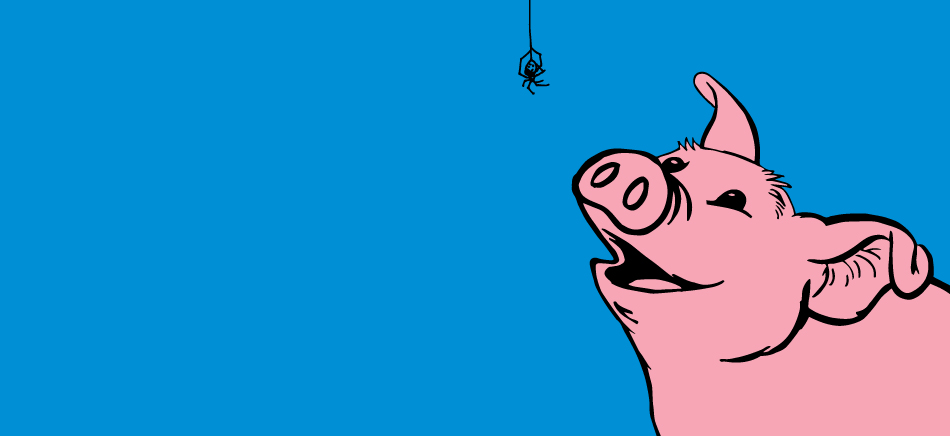 A pig looking up at a spider