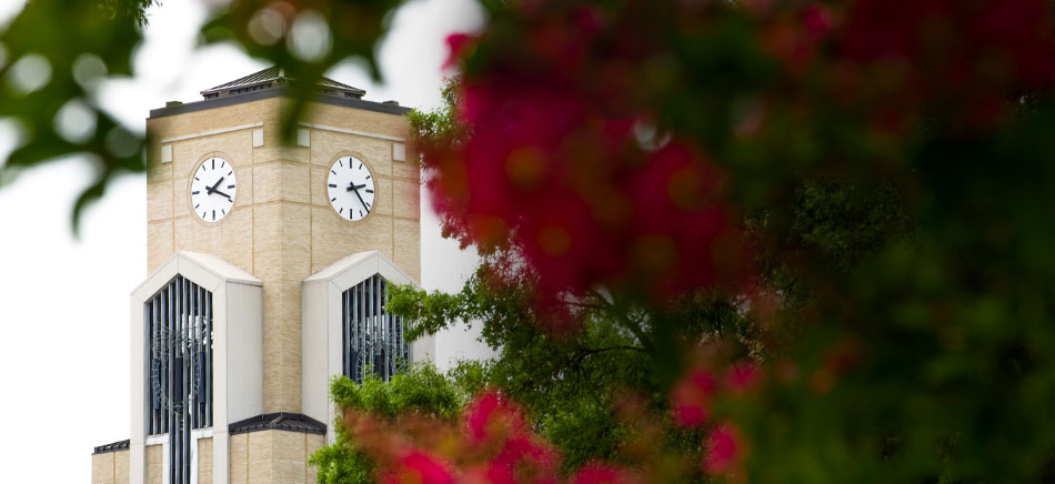 Library Clock Tower Behind Campus Crepe Myrtle
