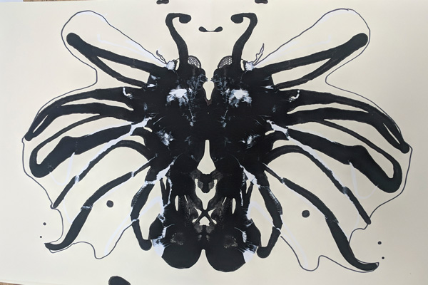 "Image of ""inkblot insect"""