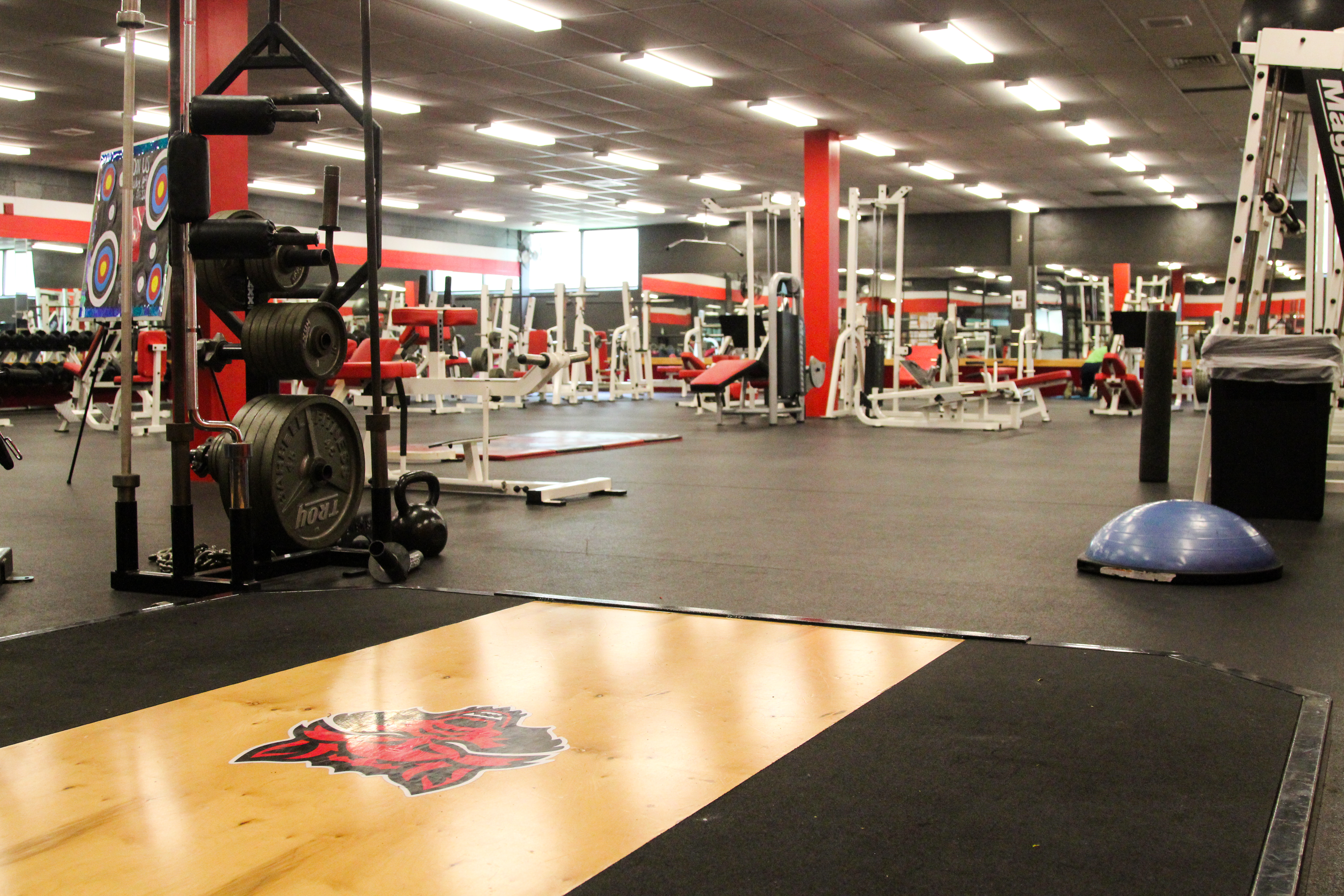Picture of The Free Weight Room