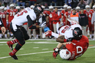 godaddy-bowl-2014-041