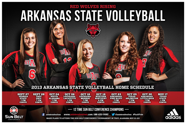 Volleyball Poster 2013