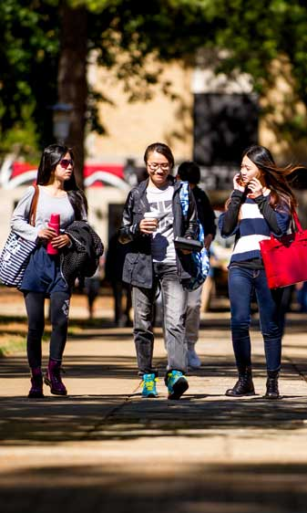 Spring Semester Enrollment Highest with New Standards