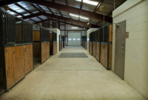Row of Stalls at the Equine Center