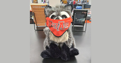 Stuffed Raccoon at Service Desk