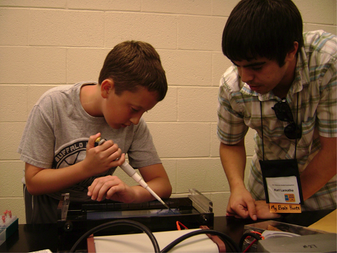 Students working for the Science Festival
