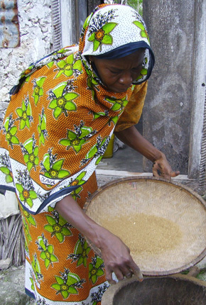 Woman With Winnowing Tray